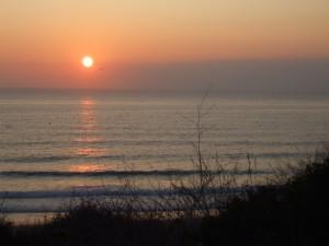 Sonnenuntergang Flitterwochen