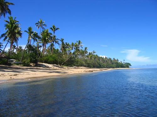 Maledieven Strand mit Palmen